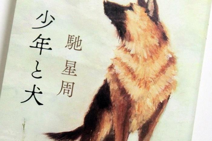 オーディオブック版「少年と犬」あらすじ